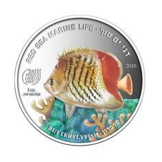 Butterflyfish 999 Silver Coin - in the Series Buy Coins, Undersea World, Metal Prices, Gold And Silver Coins, Bullion Coins, History, Historia
