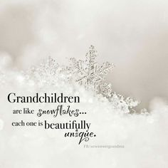Grandchildren are like snowflakes...each one is beautifully unique.