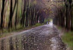 """Les """"peintures impressionnistes"""" que vous découvrez sur ces images sont d'authentiques photographies artistiquement capturées par Eduard Gordeev dans les rues et les ruelles de sa magnifique ville de St-Petersbourg en Russie.   La bonne impression Intitulée CityScape sa série de photographies ré"""