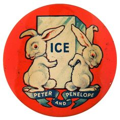 Rabbits and ice