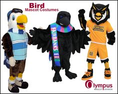From hawks to falcons, to eagles to owls...  www.olympus-mascots.com