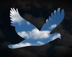 oefening 15 vredesduif