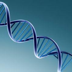 #BruceLipton #Mind over #Genes