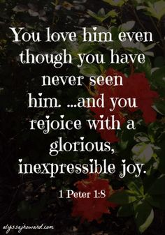 Joy is something we all hope for. I haven't met a person yet who didn't have the desire to find true happiness and contentment in life, and we all search for it in different ways. But true joy isn't found in this world but is found in Jesus Christ!