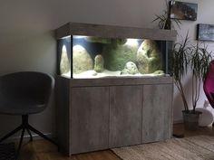 Aquarienbauer bei Coesfeld und Osnabrück – Bilder-Galerie