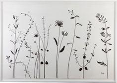 John Derian Company Inc — Hugo Guinness Drawings Botanical Drawings, Botanical Illustration, Doodle Drawings, Doodle Art, Line Drawing, Painting & Drawing, Silkscreen, Wildflower Tattoo, Wildflower Drawing