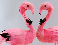 Pink Flamingo Cake Topper: Tropical Groom and Groom Love Bird Gay Wedding Cake Topper -- Two Grooms