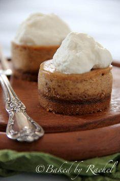 Mini Pumpkin Cheesecakes with Gingersnap Crust - bakedbyrachel.com