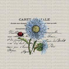 Vintage Paris Blue Flowers Ladybug Collage French Ephemera Digital Download Image Transfer Clip Art Fabric Transfer Collage Paper Crafts