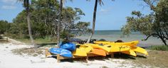 Kayaks are ready for visitors to use to explore the paddling trail through the mangroves at Long Key State Park in the Florida Keys. Photo by Jeff Simpson.