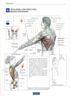 274 best fitnes images on Pinterest   Workouts, Exercise workouts ...