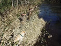 A look at different waterfowl blinds available to duck and goose hunters.