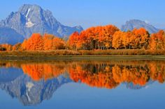 Grand Tetons in Fall | Fall Colors in Grand Teton Oxbow Bend | ´)(` .¸Autumn/Fall | Pintere ...