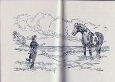 The Estate Sale Chronicles: The Horse Book Illustrators, Part One: Paul Brown