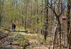 Traversée de la zone Chapman Crédit photo : L. Galarneau