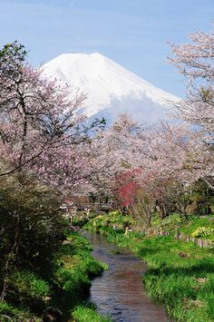 Mount Fuji view and a stream in the backyard in Japan