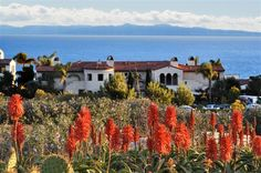 Condo vacation rental in Rancho Palos Verdes from VRBO.com! #vacation #rental #travel #vrbo