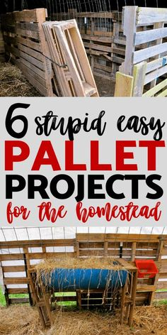 6 Quick and Easy Pallet Projects for the Homestead 6 Quick and Easy Pallet Projects for the Homestead,Homestead & Farm Life Recycled wooden pallets are a frugal way to build and create on the. Farm Projects, Wooden Pallet Projects, Pallet Crafts, Diy Pallet Furniture, Diy Furniture Projects, Pallet Art, Woodworking Projects, Small Pallet, Furniture Design