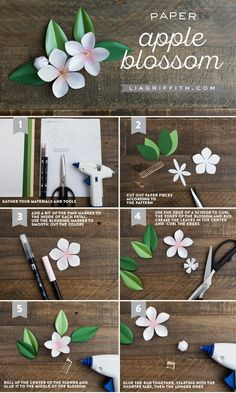 Paper Apple Blossom Pattern And Tutorial from Lia Griffith If you are looking for a DIY craft project for spring, try these paper apple blossom branches to add to your home decor! Design by handcrafter Lia Griffith Crepe Paper Flowers, Felt Flowers, Diy Flowers, Fabric Flowers, Flower Paper, Flower Ideas, Flower Art, Diy Craft Projects, Fun Crafts
