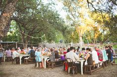 Festival in het bos