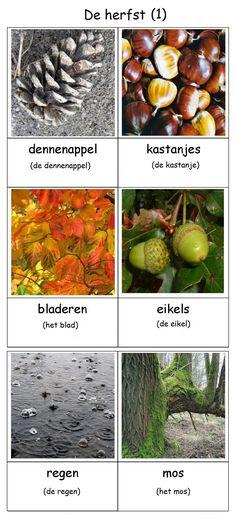 De herfst (1) & file:///C:/Users/wald/Downloads/Woordenschatkaarten_herfst.pdf