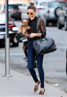 Miranda Kerr Model Miranda Kerr took her pup with her when she left her hotel for a photo shoot in New York City, New York on November 25, 2012.