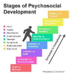 Erikson's Stages of Psychosocial Development #psychology #children. Repinned by  SOS Inc. Resources.  Follow all our boards at http://pinterest.com/sostherapy  for therapy resources.