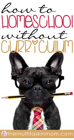 Yes you really can homeschool without curriculum