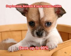 16 best amazon promo code 2014 images on pinterest amazon online click on pictures to go to dog houses kennels pens coupon fandeluxe Choice Image