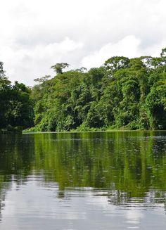 En route pour Tortuguero en bateau bus au milieu de la jungle ! #CostaRica