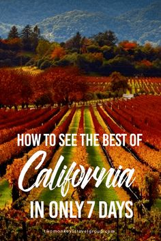 How to See the Best of California in Only 7 Days This summer you've decided to explore the West Coast but only managed to get a week off from work. You don't want to feel overloaded, and you aren't convinced there is enough time to get out and explore the best places California has to offer. I thought the same thing, so I set out to discover what you could actually do with seven days in this amazing state.