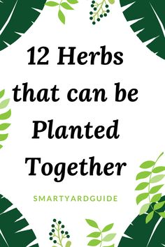 herbs that can grow together Monthly Budget Sheet, Budget Sheets, Monthly Budget Planner, Take Money, How To Make Money, Adhd Diagnosis, Free Things To Do, Financial Tips, Learning Spanish