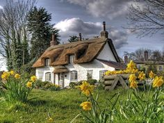 Beautiful thatched roof cottage.
