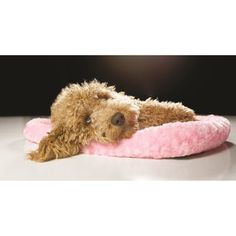 Shop for FurHaven NAP Ultra-Plush Crate-Bolster Dog Bed. Free Shipping on orders over $45 at Overstock.com - Your Online Pet Beds Store! Get 5% in rewards with Club O! - 18678322