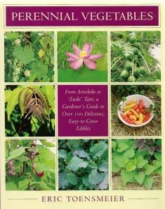 20 Perennial Vegetables to Plant Once and Enjoy Forever! Permaculture!