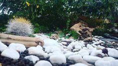 #italiangarden #giardino #gardens #earthling #flowerbad #lavender #italianstyle #landscape #gardenersofinstagram #landscapedesigner #architectstudio #giardini #landarch #sunnygarden #rosemarylife #homesweethome #homedecor #home #piantegrasse #gardenideas #homedesign #paesaggista #landscaper #architetto #homedetails #homeland #homeliving #scorcidicasa #dettaglidicasa #casadolcecasa