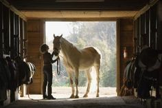 How to Be a Horse Boarding & Riding Stable Owner