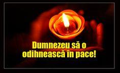 O noua tragedie loveste lumea showbiz-ului din Romania: a murit ieri! Candle Jars, Candles, Romania, Tea Lights, Tv, Google, Stone Art, Flowers, Tea Light Candles