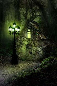 Eerie, Enchanted, and Cozy all in one. Would love to be inside there on a night like that :) Fairy Land, Fairy Tales, Fairy Tale Forest, Magical Forest, Dark Forest, Fantasy World, Fantasy Art, Fantasy House, Fairy Houses