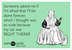 Someone asked me if I'm afraid that I'll be alone forever,  ...if interested, for more ecards, you can check out my board here: http://www.pinterest.com/rustyfox7/ecards-not-group-board/