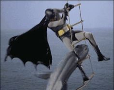 New trending GIF on Giphy. batman shark batman 1966 1960s batman batman vs shark. Follow Me CooliPhone6Case on Twitter Facebook Google Instagram LinkedIn Blogger Tumblr Youtube