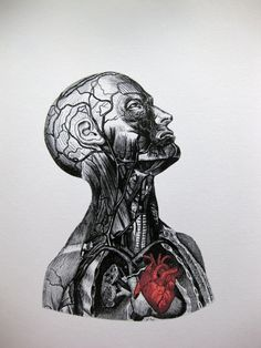 Anatomical Heart Mixed Media Archival Print8x10Decorative