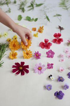 Flower Messengers and Flower Communication...