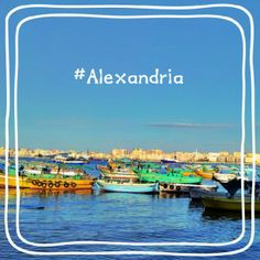 Alexandria | الإسكندرية Kinds Of People, Alexandria, Four Square, Egypt, Sunset, City, Places, Beautiful, Cities