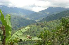 Coffee Cultural Landscape of Colombia, Columbia. Inscription in 2011. Criteria: (v)(vi)