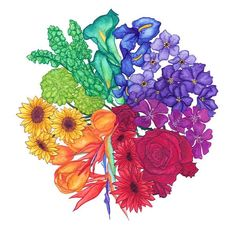 Flora by Jamie Bauza, via Behance Interesting take on the color wheel Color Wheel Design, Color Wheel Art, Color Wheel Tattoo, Color Tattoo, Color Wheel Projects, Art Projects, Creative Colour, Teaching Art, Color Theory