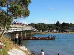 Maori waka (war canoes) focus on Waitangi Day   The Kiwi Travel Writer