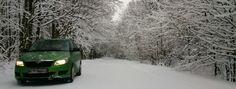 Digital oil in the snow colour.