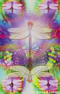 dragonflies.jpg Photo:  This Photo was uploaded by Debbie1229_photos. Find other dragonflies.jpg pictures and photos or upload your own with Photobucket ...