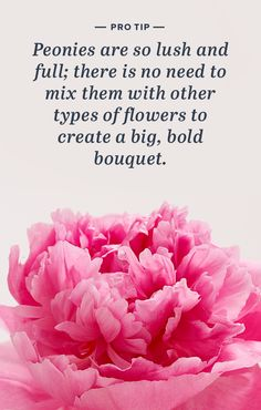Peonies are one of the few flowers that look best all on their own. Treat yourself while they're here (May-June)!